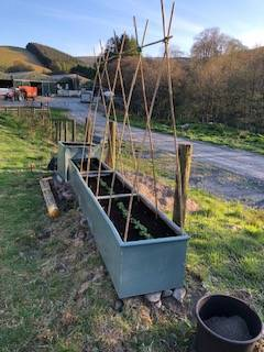 Vegetable troughs