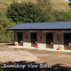 james-ewart-racing-facilities-the-stables-snowdrop-view-boxes