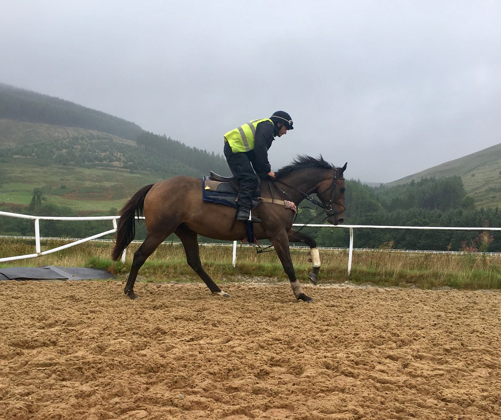 Ground control cantering august